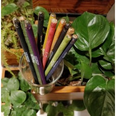 Notex Wood Free Plantable Colour pencils. Made from 100% Recycled Newspapers / 100% Eco friendly / 10 Assorted Seeds Colours